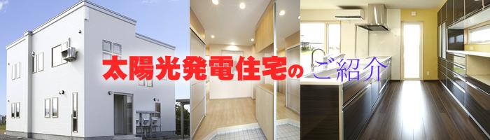 hirakawa_y